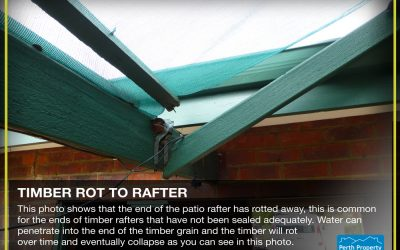 Timber Rot to Rafter